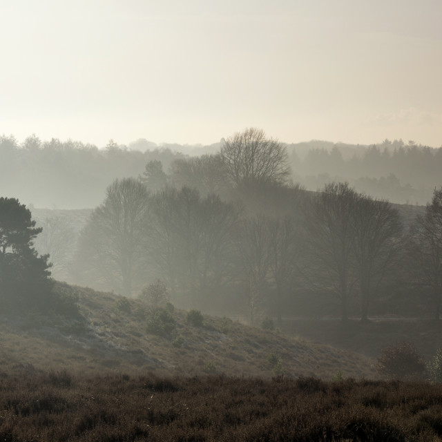 """Misty hills near the Posbank"" stock image"