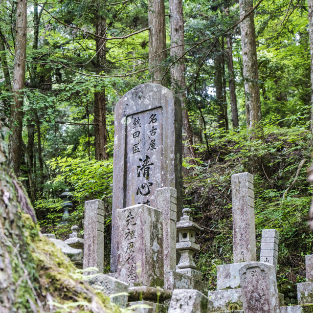 """Okunoin Path"" stock image"