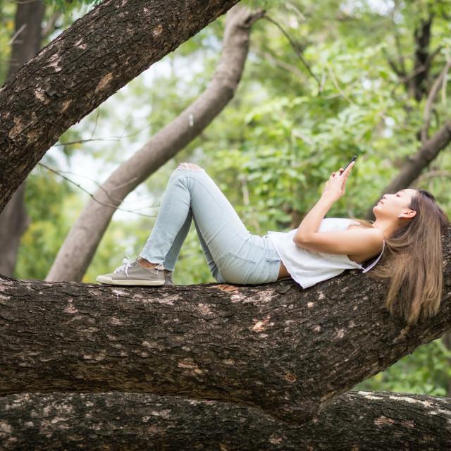 """Woman play smartphone on big tree"" stock image"