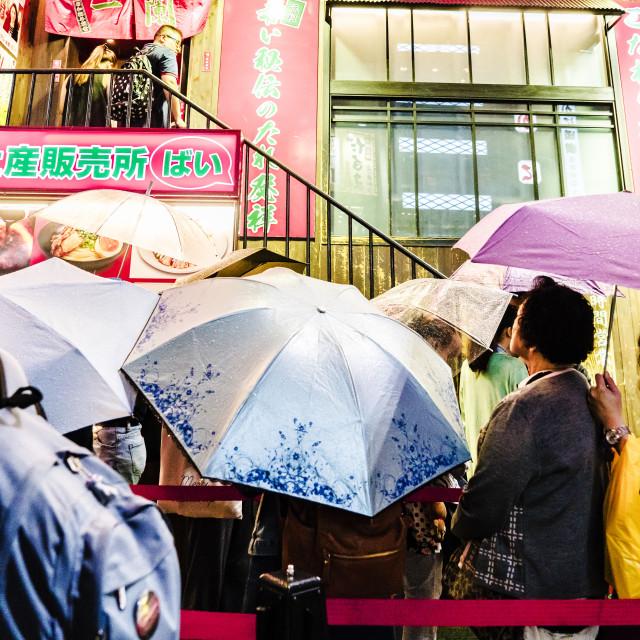 """Umbrella Family"" stock image"