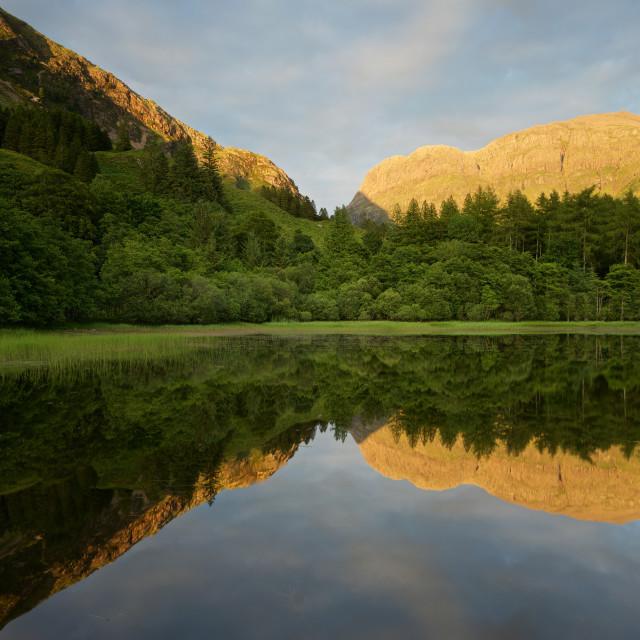 """""""Torren Lochan Reflections"""" stock image"""