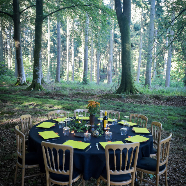 """Table in the woods"" stock image"
