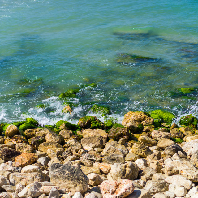 """Layers of teal ocean, green algae and tan rocks"" stock image"