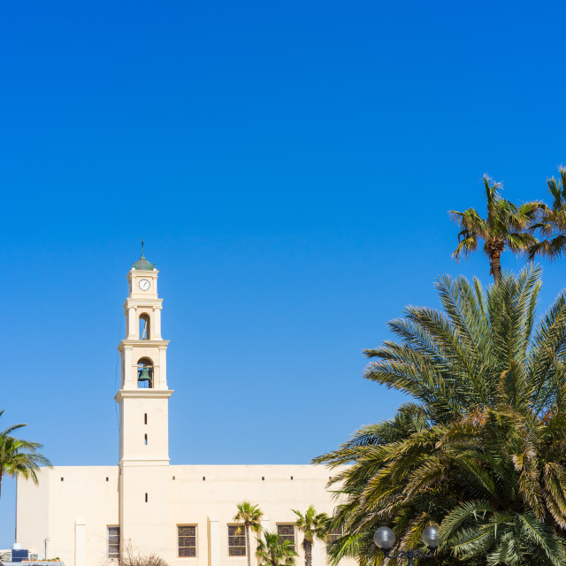 """An old tower in Jaffa with palm trees in the background"" stock image"