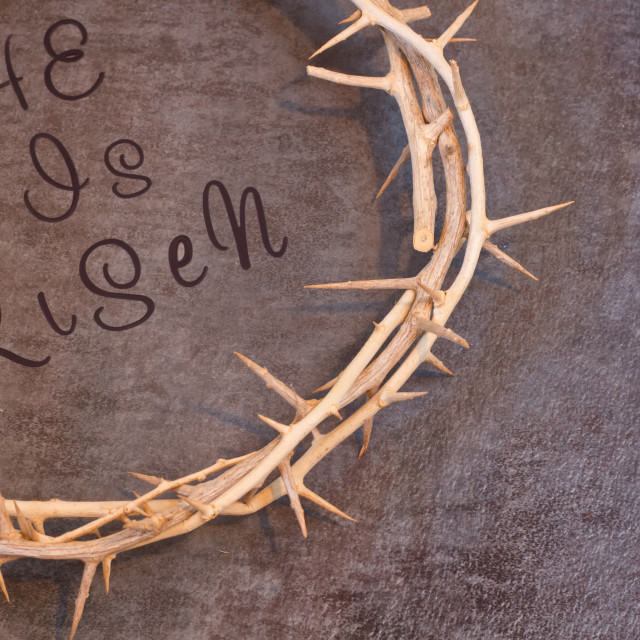 """Easter He is Risen Quote surrounded by a Crown of Thorns on a te"" stock image"