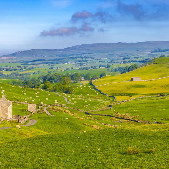 """Yorkshire Dale landscape"" stock image"