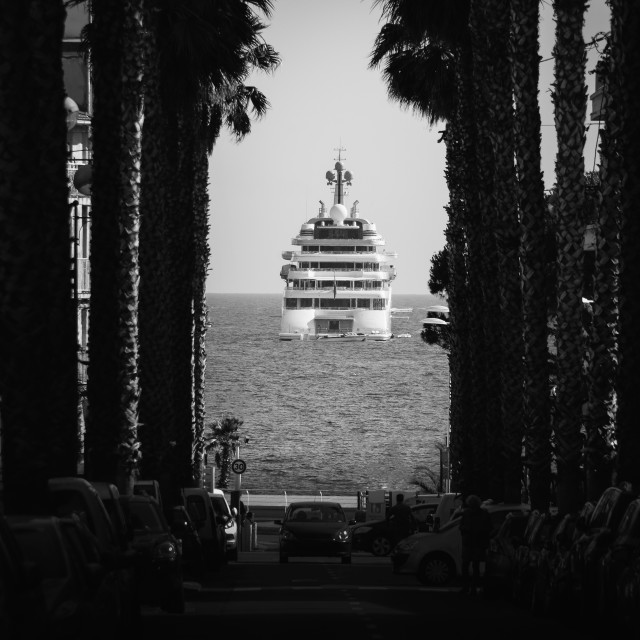 """""""Palm tree and luxury yachts in Cote d'Azur, France"""" stock image"""