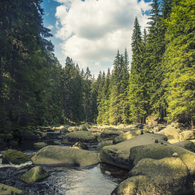"""river Vydra in Sumava mountains"" stock image"