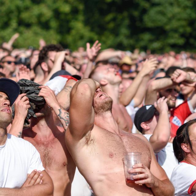 """""""Sweden v England, FIFA World Cup,Nottingham,UK."""" stock image"""
