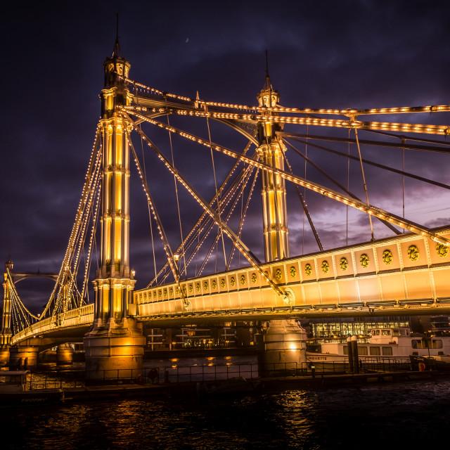 """Albert Bridge"" stock image"