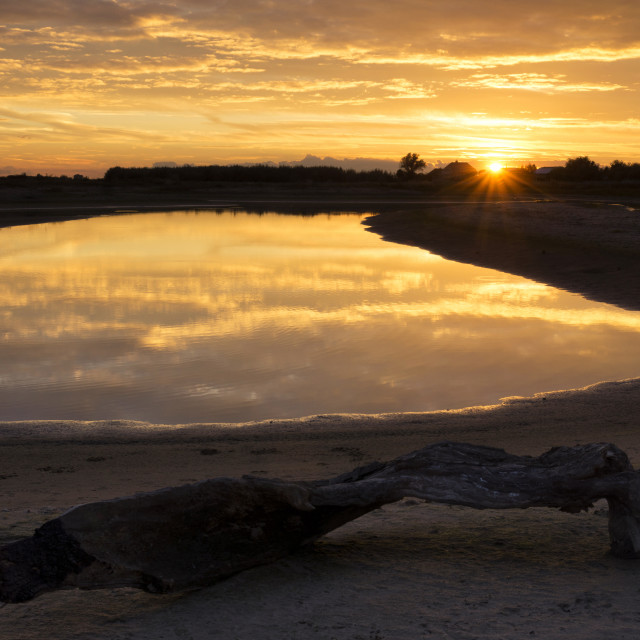 """""""Channel in the floodplain of the Merwede river"""" stock image"""