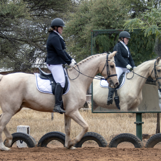"""Dressage riding"" stock image"