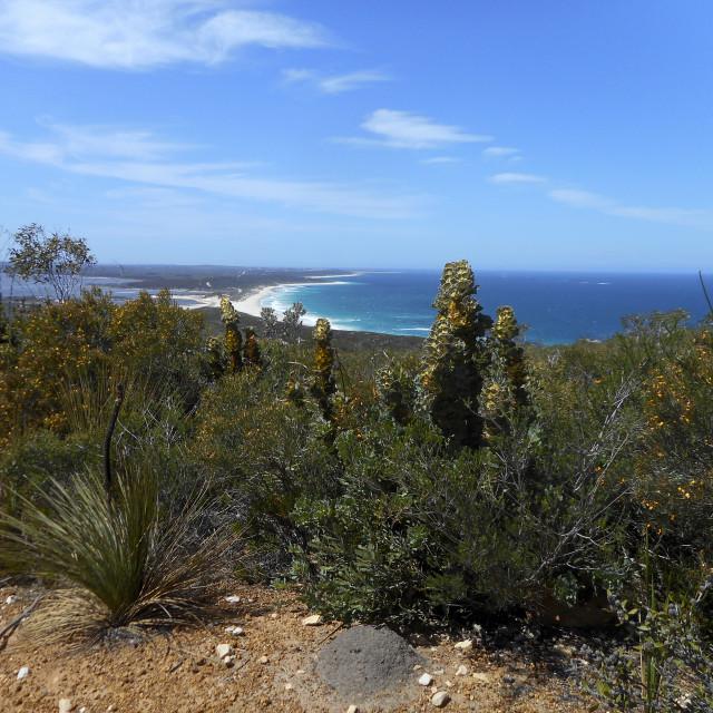 """Barrens lookout,Western Australia."" stock image"