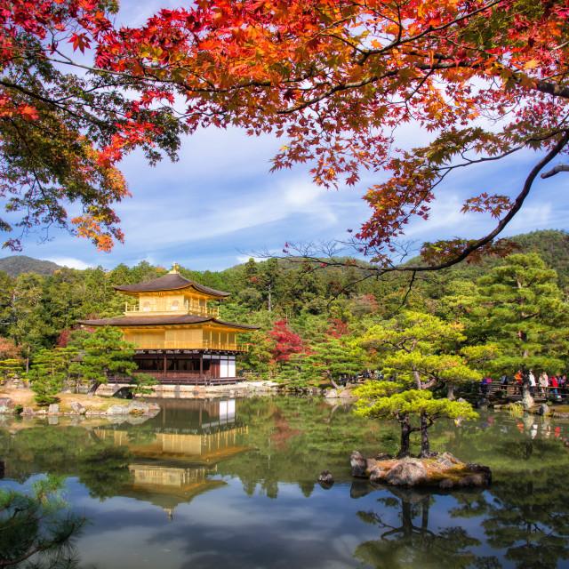 """Golden Pavilion at Kinkakuji Temple at fall"" stock image"