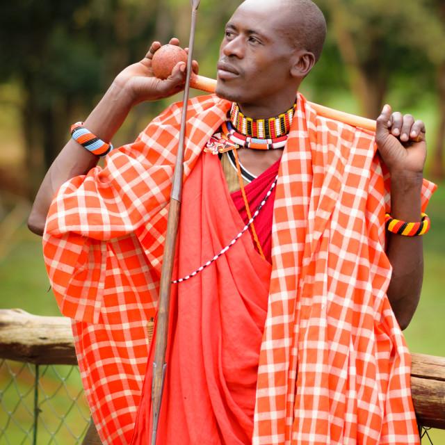 """Maasai Moran"" stock image"