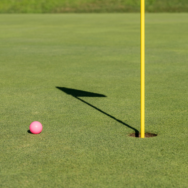 """""""Pink golf ball by flag and hole on putting green"""" stock image"""