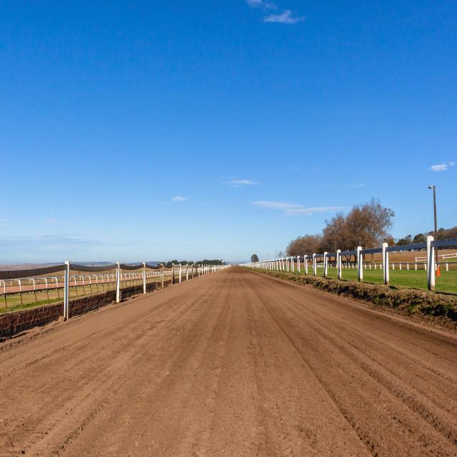 """""""Race Horse Training Track"""" stock image"""