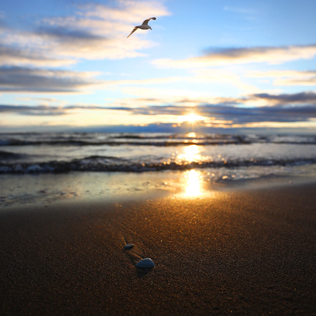 """""""Evening at The Beach"""" stock image"""