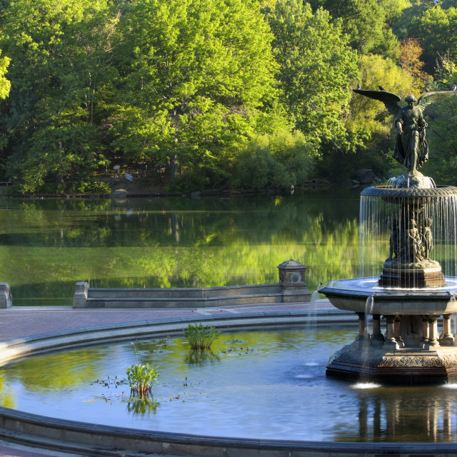 """Early morning at the ""Angel of the Waters"" Fountain at Bethesda Terrace in..."" stock image"