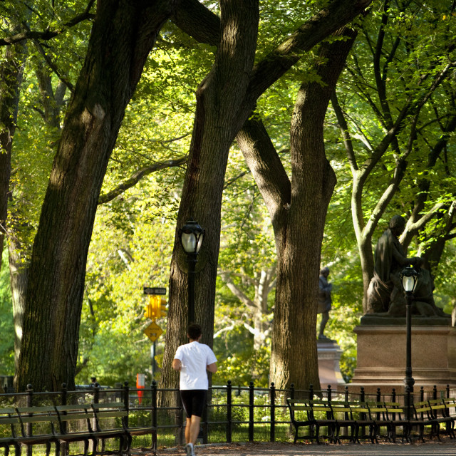 """Early morning jog in Central Park, Manhattan New York City USA"" stock image"