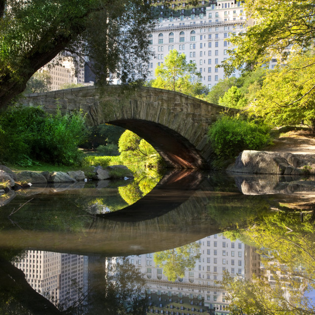 """Stone Bridge over the Pond in Central Park with reflections of the Plaza..."" stock image"