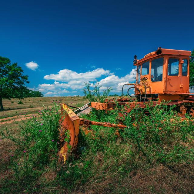 """""""Broken Buldozer in the middle bush shrubs"""" stock image"""
