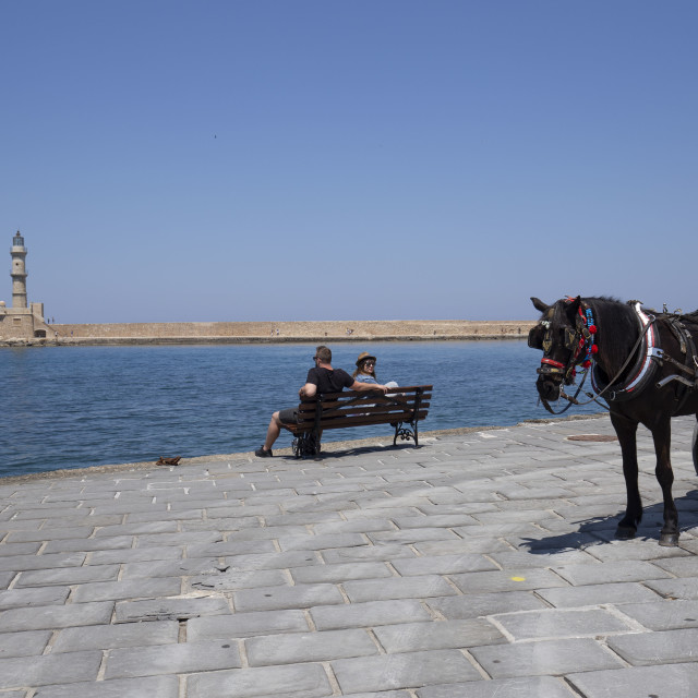 """""""Horse and the Lighthouse"""" stock image"""
