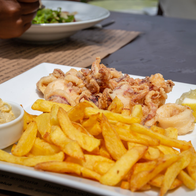 """Calamari and chips"" stock image"