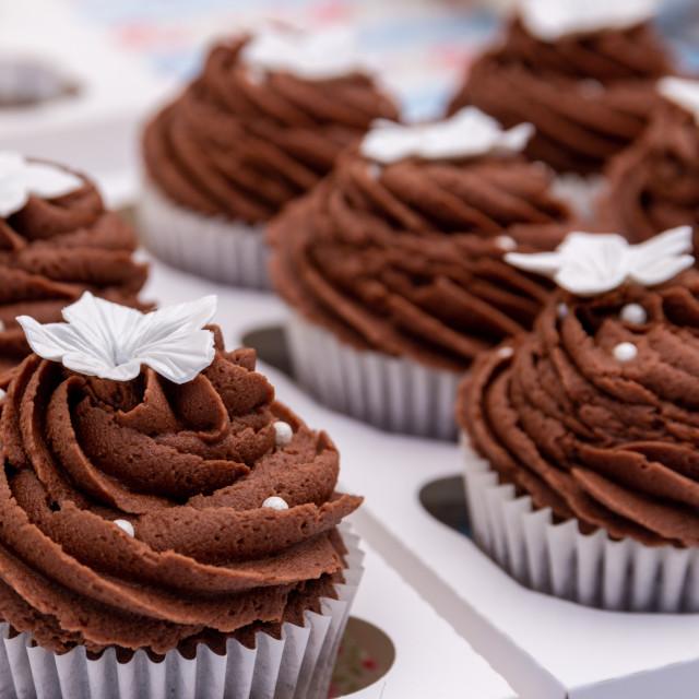 """""""Chocolate cupcakes"""" stock image"""
