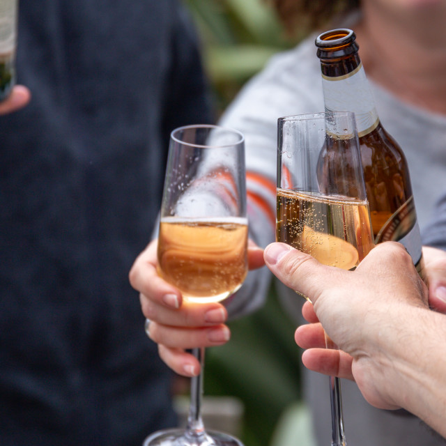 """""""Friends toasting with drinks"""" stock image"""