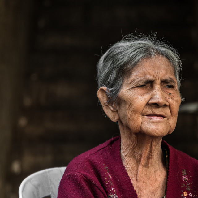 """Portrait of a Khmer woman"" stock image"