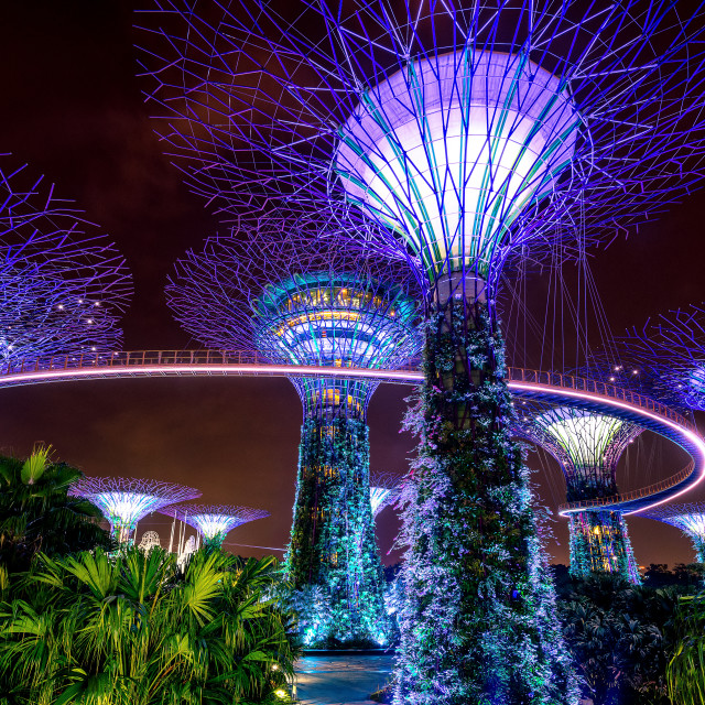 """Gardens by the Bay"" stock image"