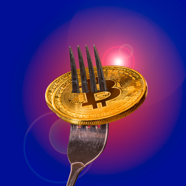 """""""Two bitcoin macro image on fork to illustrate new blockchain"""" stock image"""