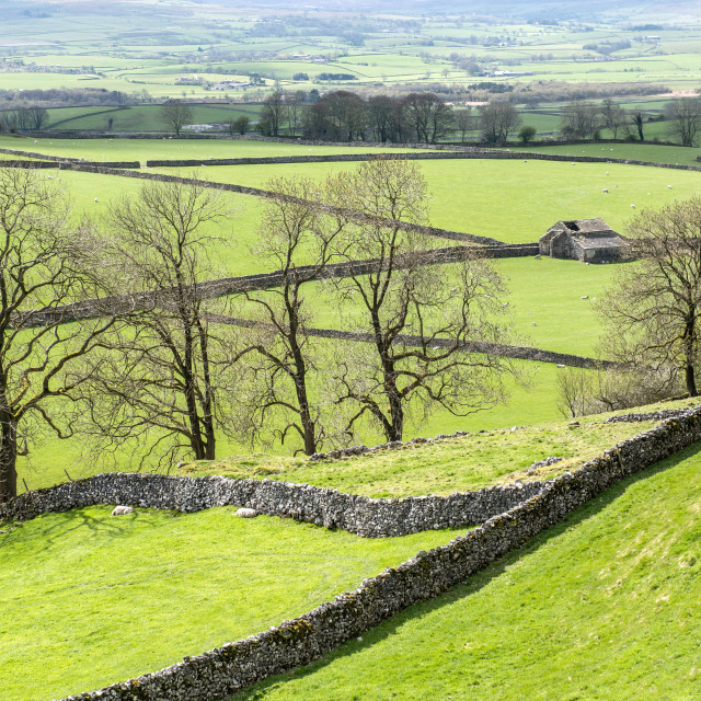 """Typical Yorkshire Dales countryside"" stock image"