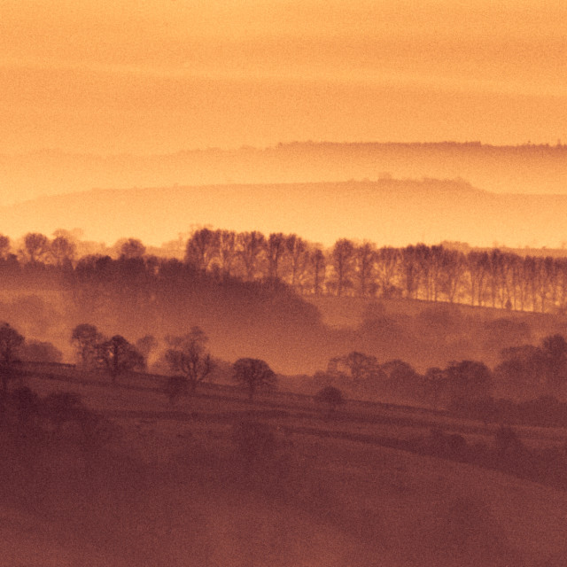 """Mist on the Somerset Levels"" stock image"