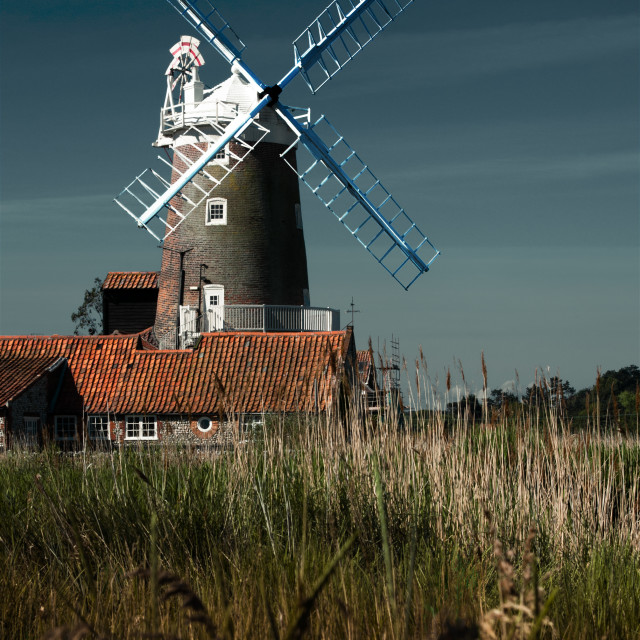"""Windmill in Norfolk"" stock image"