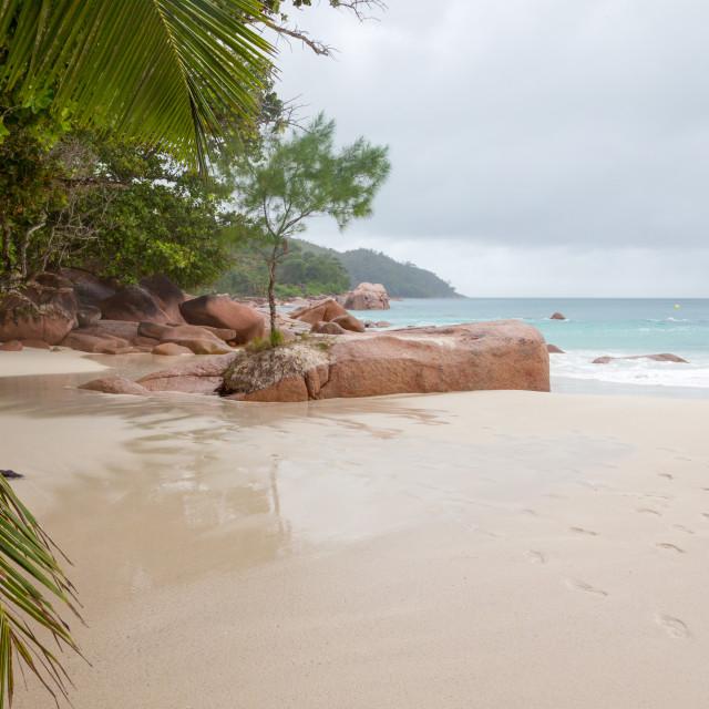 """Beach on Praslin, Seychelles"" stock image"
