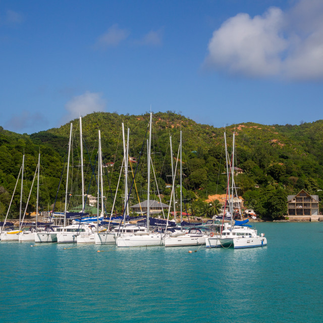 """Marina on Praslin"" stock image"