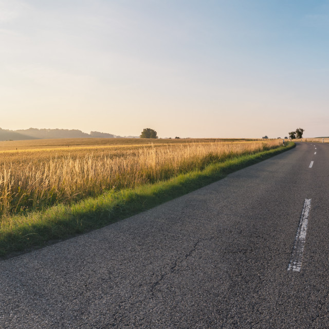 """""""Road crossing agricultural fields at sunrise"""" stock image"""