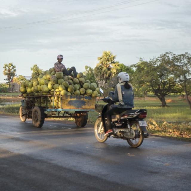"""""""CAMBODIA KAMPONG THOM LANDSCAPE MOTORBIKE"""" stock image"""