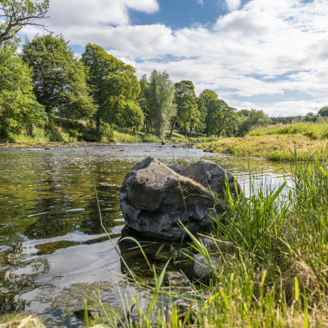 """Teviot River"" stock image"