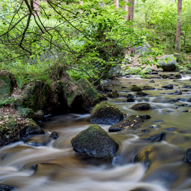 """Wyming Brook"" stock image"