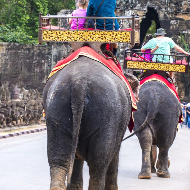 """Elephant ride at Angkor Wat in Cambodia"" stock image"