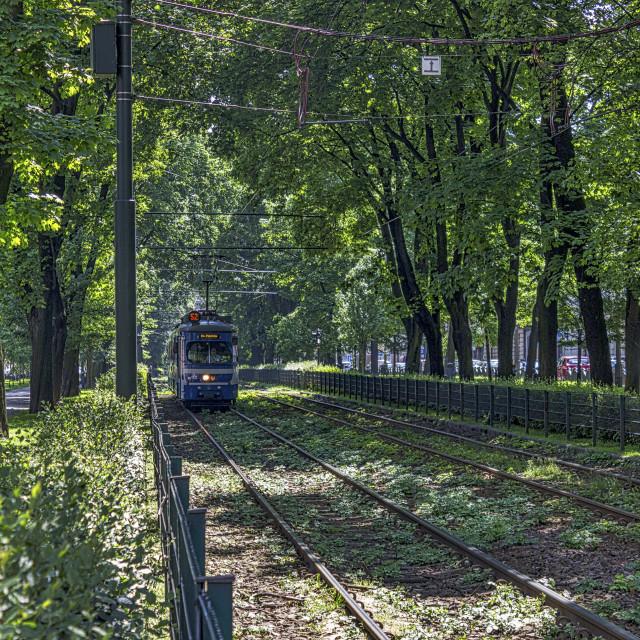 """Polish Tram."" stock image"