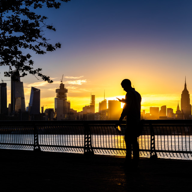 """Silhouette of a man - Morning Tweet"" stock image"