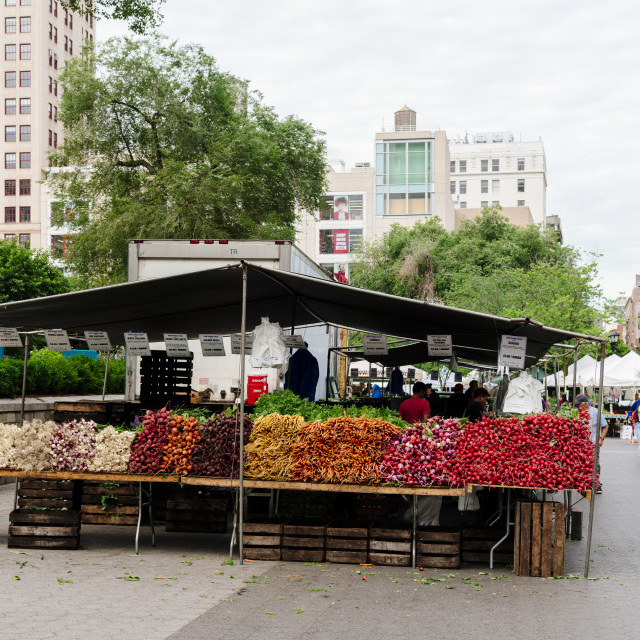 """Fresh vegetables market stall in Union Square Greenmarket in New"" stock image"