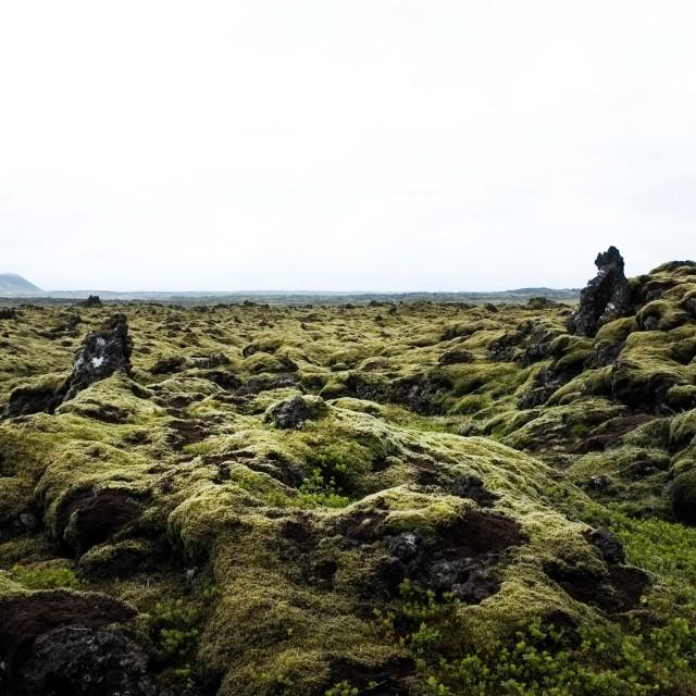 """""""Iceland-167"""" stock image"""