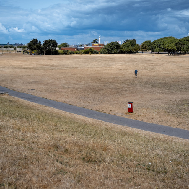 """Dry brown grass field in a public park due to extreme hot weather"" stock image"