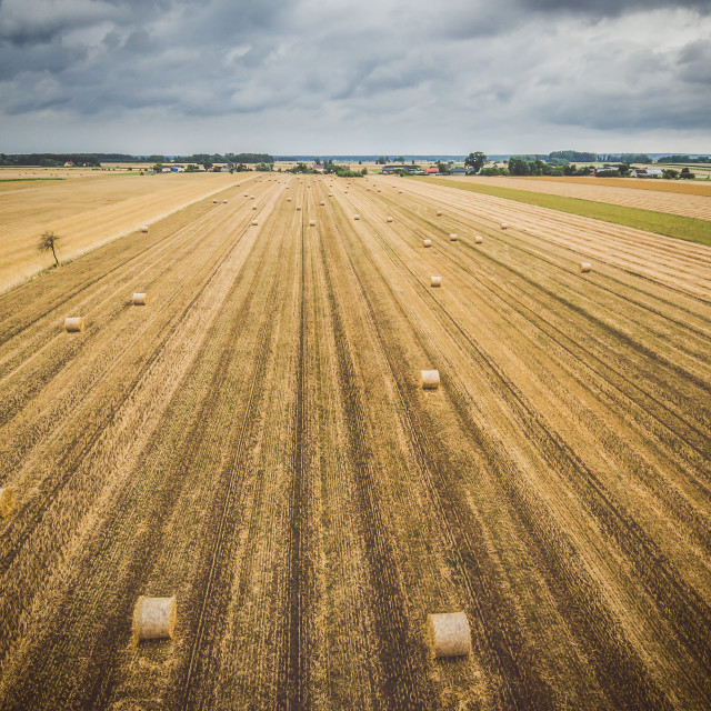 """""""Aerial view of round hay bales on stubble with a village in the background"""" stock image"""