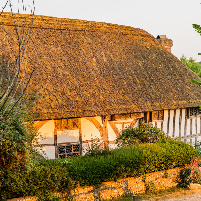 """""""Thatched Cottage in the Village of Alfriston"""" stock image"""